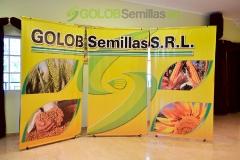 Golob Semillas_1